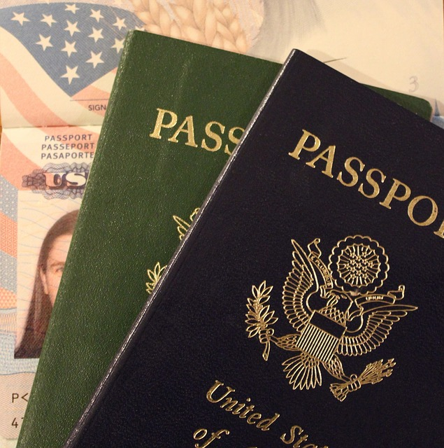 US E-2 Treaty Investor Visa details and practical process guide