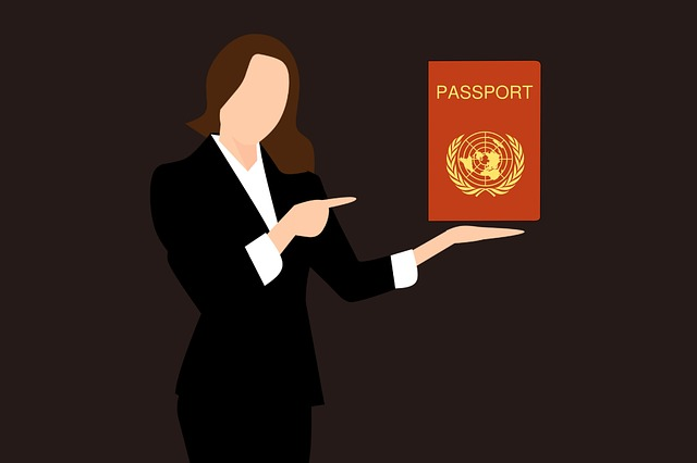 How to choose the best citizenship by investment program in 2019?